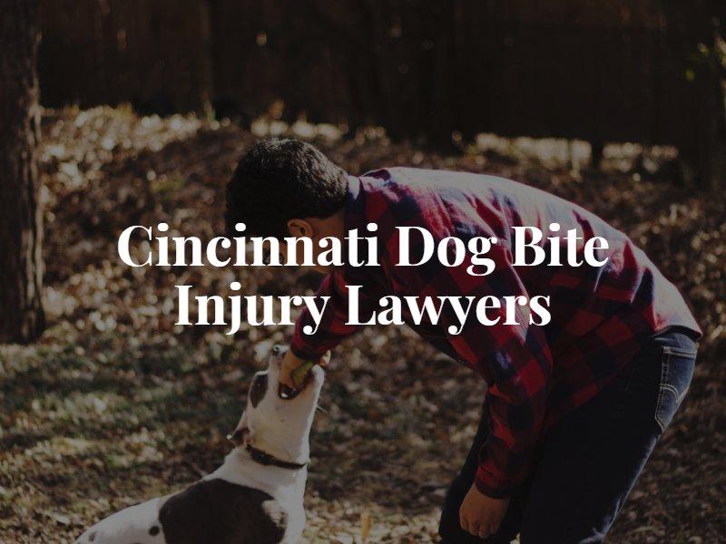 Cincinnati Dog Bite Lawyer