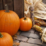 fall festivals and events